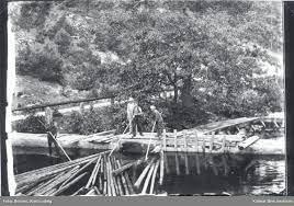 Flottning av timmer i Hjorted. - Kalmar läns museum / DigitaltMuseum